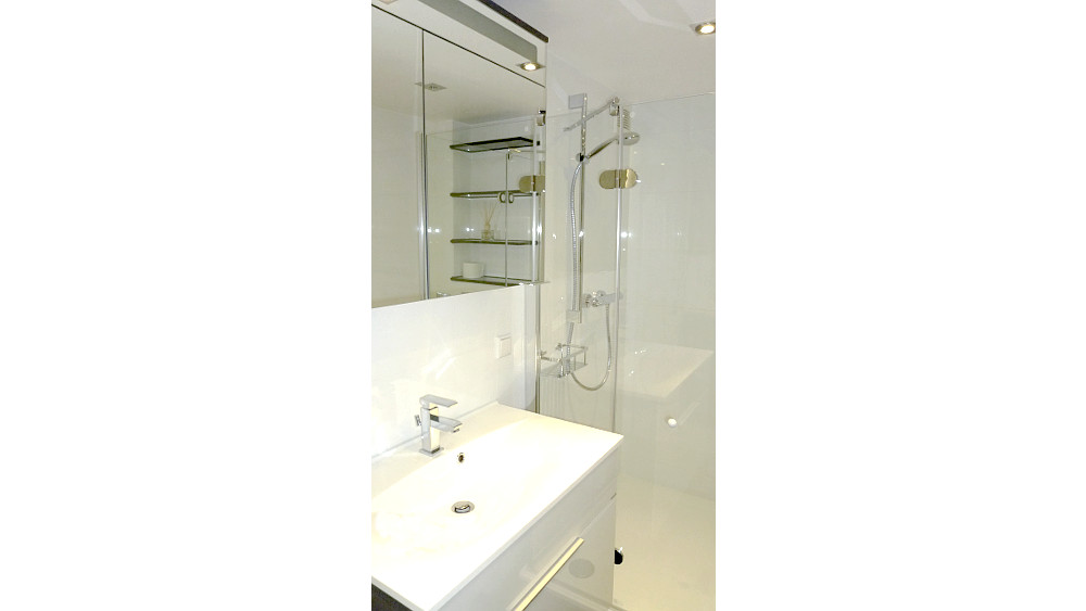 Washbasin including vanity unit, mirror cabinet and shower