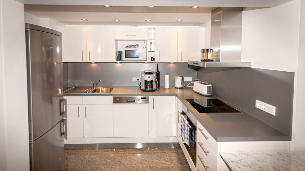 Fully equipped kitchen with induction cooker with oven, dishwasher, fully automatic coffee machine, water boiler and toaster